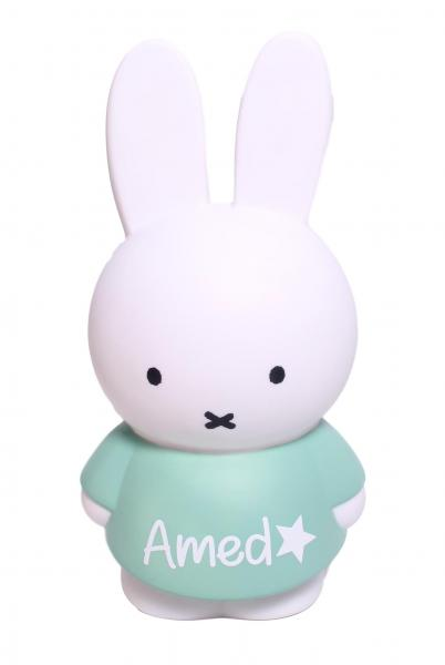 Sparkasse Miffy, mint